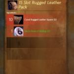 [GW2] Leatherworker Lv300
