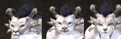 gw2-total-makeover-kit-new-faces-charr-female