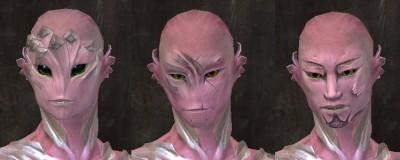gw2-total-makeover-kit-new-faces-sylvari-male